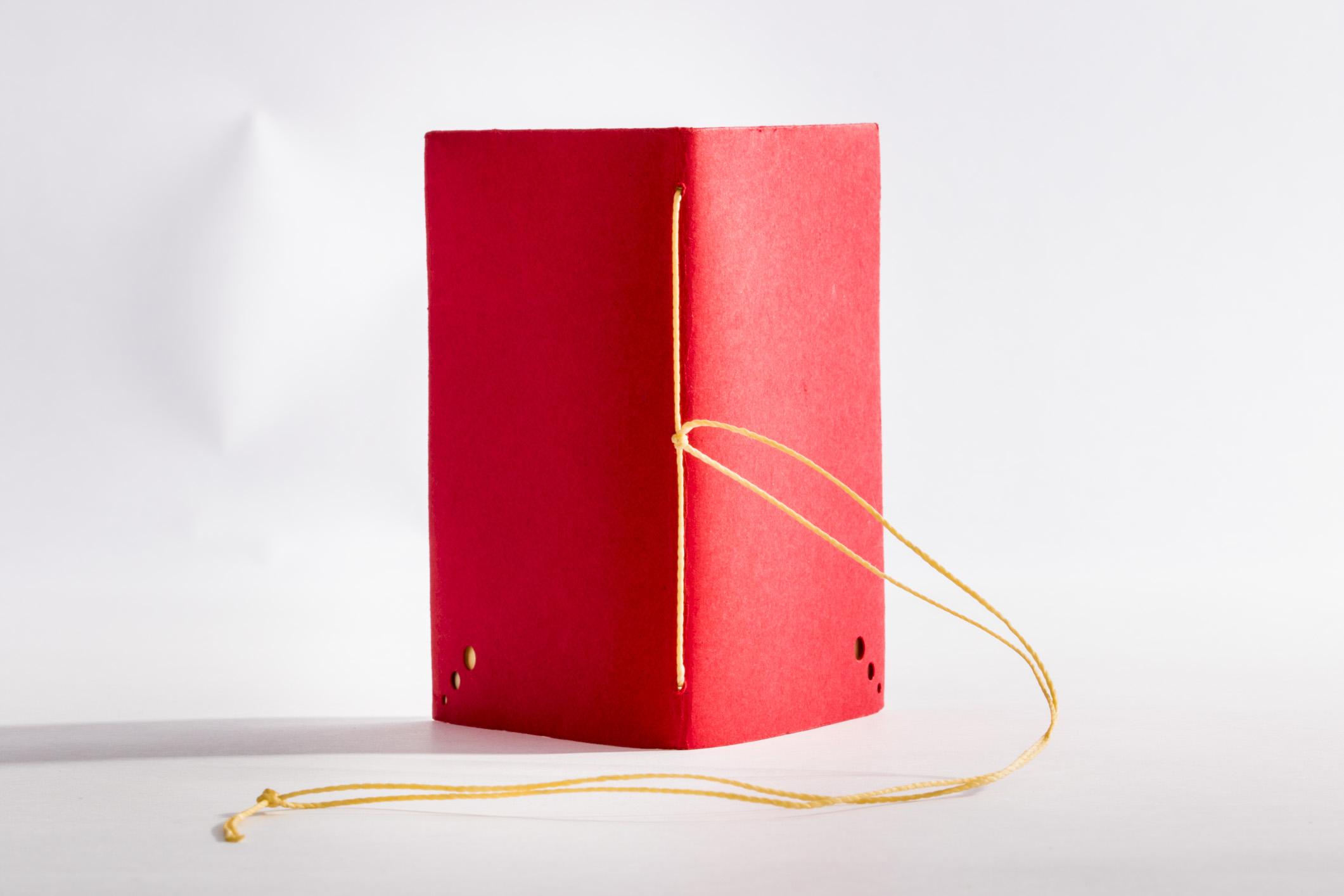 encadernacao_livros_capas_flexiveis_eduK_Padovan-35.jpg